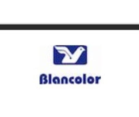 BLANCOLOR | CONSTRUEX
