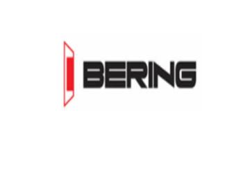 Puertas Comerciales Metálicas - Bering