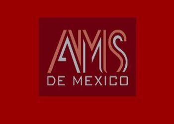 Puertas de Madera - AMS DE MÉXICO