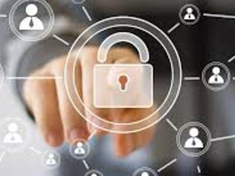Programa de Análisis de Vulnerabilidades